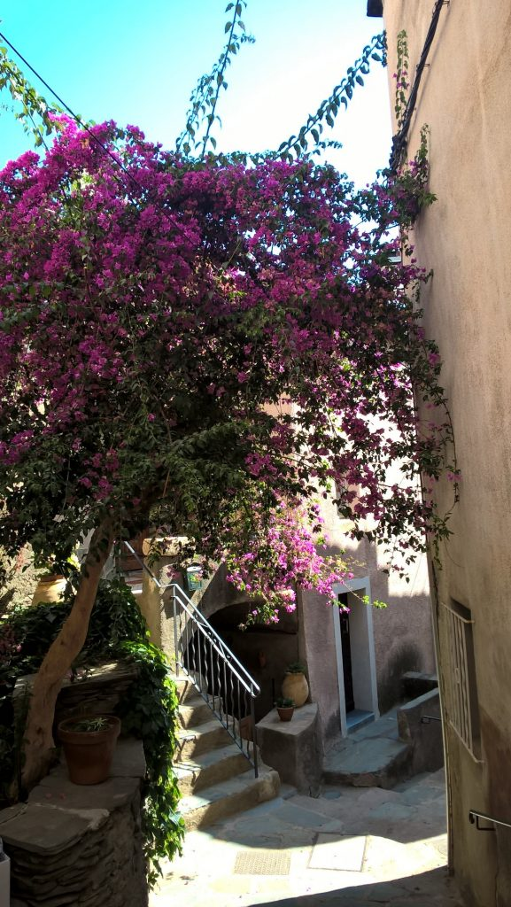 Road trip en Haute Corse